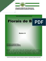 3-Florais Bach 2019