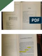 Gadamer Diálogo y Poesía