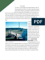 weed whackers pdf