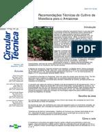 Recomendações Técnicas do Cultivo de Mandioca para o Amazonas