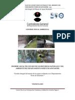 4 Informe Recursos Naturales 2019pdf