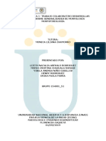 Unidad 1- Tarea 1 - Trabajo Colaborativo - Desarrollar Actividad Sobre Generalidades de Morfología.