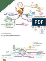 00_intro_mapa_mental.pdf