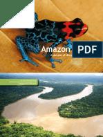 20101026 Amazon Alive