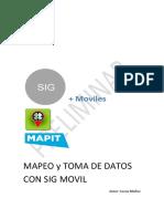 Mapeo Con Sig Movil_mapit_preliminar