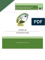 SILABO DE TELEDETECCION RECURSOS NATURALES RENOVABLES