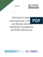 GuiaPasoPasoFactura_v1_0
