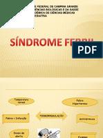 Aula 04 - Síndrome Febril