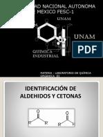 279886046-Identificacion-de-Aldehidos-y-Cetonas.pptx
