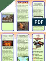 Triptico Contaminacion Forestal