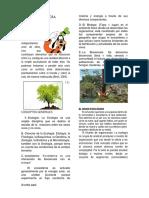 Bases Ecologicas Ecosistemas
