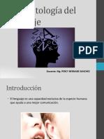 Psicopatologai Del Lenguaje