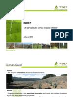 presentacion indef APL (Jul_13).pdf