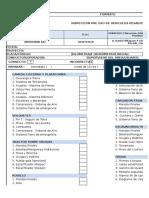 SST.FR.04 INSPECCIÓN PRE USO DE VEHICULOS PESADOS V00_07-01-19.xlsx