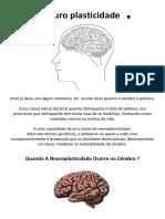 Neuro Plasticidade Do Cérebro PDF