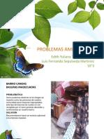 Problemas maibnets .pdf