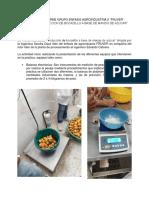 Borrador Informe Grupo Enfasis Agroindustria II
