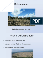 Deforestation (2)
