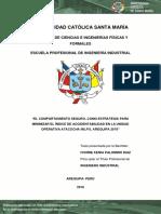 Comportamiento Seguro-Atacocha.pdf