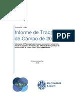 Informetrabajosdecampo Dr 2017 Leiden University