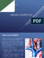 Venas aorticas