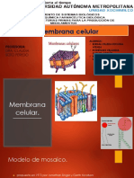 Membrana Celular Final