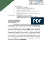 Confirmacion Palomino Ultimo