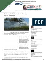 Bukit Kandis Terbakar, Penyebabnya Belum Diketahui - Rmolbengkulu.com