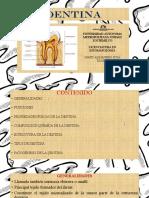 presentación dentina.pptx