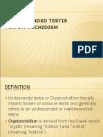 81201081 Undescended Testis Ppt