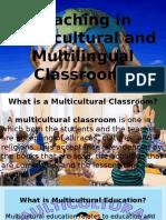 Teaching in the Multi Lingual Classroom