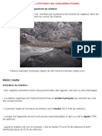 PDF BilanTP11