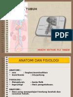 Anatomi Dan Faal