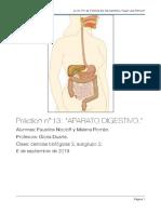 práctico aparato digestivo