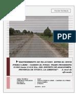 Ficha Tecnica -Cruce Pueblo Libre - Punas