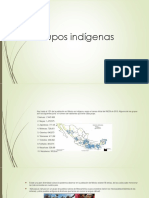 Presentacion grupos indigenas