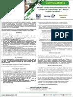 Convocatoria Pfel Paea 2019-2020