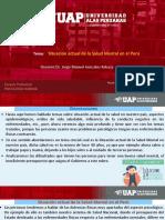 Semana 7 Situacion Actual de La Salud Mental en El Peru