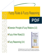 fuzzy2