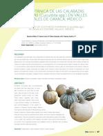 cultivos de calabaza en Oaxaca