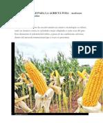 Productividad Para La Agricultura