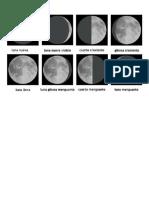 las fases de la luna graficas