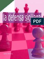 Aprenda Aperturas Defensa Siciliana, 2010 2