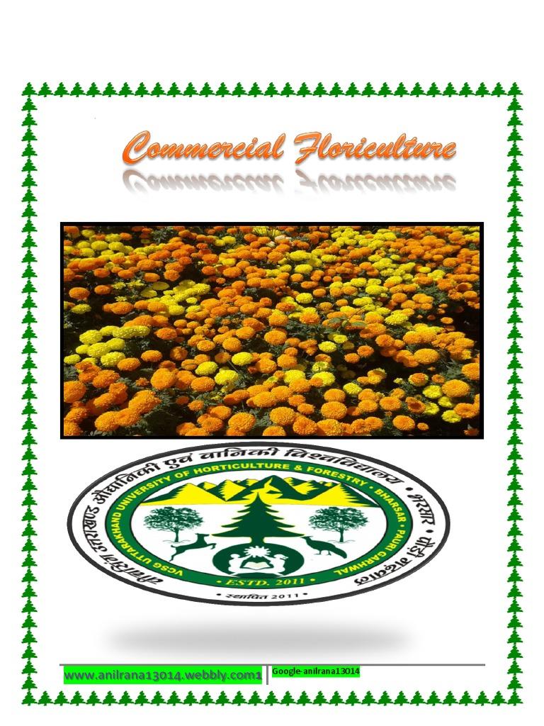 Vegetable Planting Gardening Soilless Hydroponic Cultivation Sponge Equipment N7