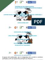 Presentacion . Asociacion Las Jardineras