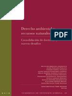 Derecho ambiental y recursos naturales. Consolidación de doctrinas y nuevos desafíos.pdf