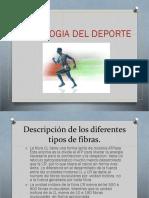 Fisiologia Del Deporte