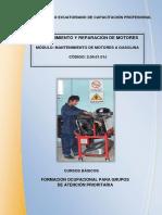 Manual de reparaciones a gasolina