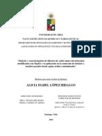 Sintesis y Caracterizacion de Silicatos de Calcio Nano Estructurados