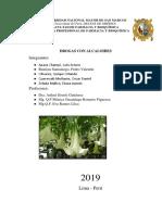 Informe 1 _ Drogas con alcaloides.docx